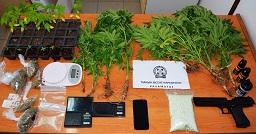 Μεσσηνία:  Συνελήφθη ένα άτομο για ναρκωτικά