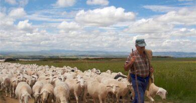 Να σταματήσει η κοροϊδία τώρα και να αποζημιωθούν οι αγροτοκτηνοτρόφοι