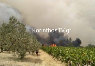 Συνελήφθη ένας άνδρας για τη φωτιά στο Καλέντζι Κορινθίας